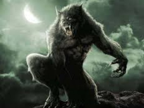 Image of The Black Wolf (real name lost in time