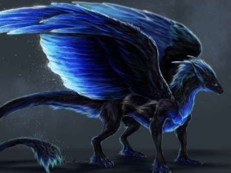 Roleplay character: Jerichos Dragon Midnight